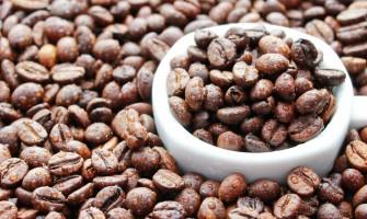 Kahve'nin Yolculuğu 3